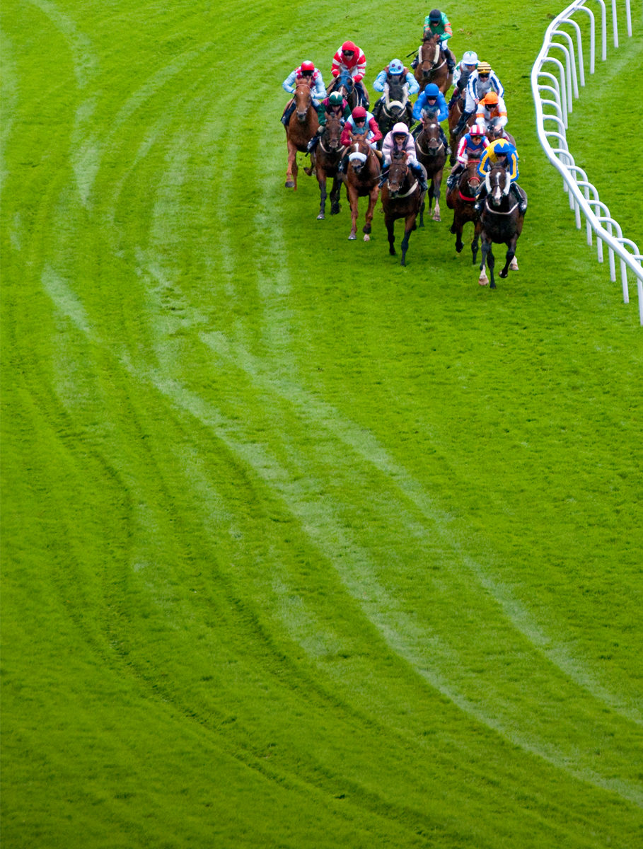 31st May Oaks betting tips and preview Sports Betting Stars
