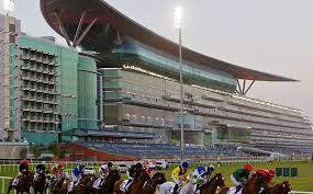 Meydan World Cup betting tips and in depth preview part 2 Sports Betting Stars