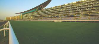 Meydan World Cup betting tips and in depth preview part 3 Sports Betting Stars