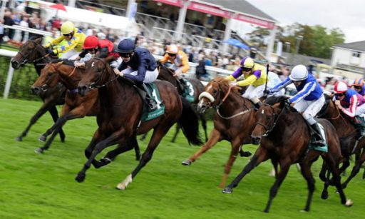 4th May betting tips and Guineas preview Sports Betting Stars