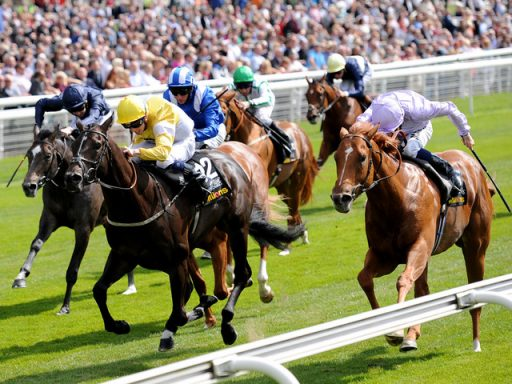 24th August Ebor betting tips and preview Sports Betting Stars