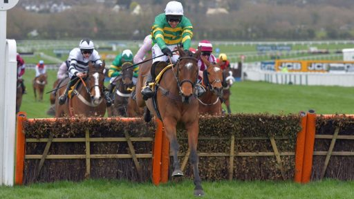 Defi Du Seuil the new frontrunner for the Champion Chase Sports Betting Stars