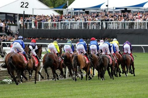 Vow and Declare on Course for Melbourne Cup Double Sports Betting Stars