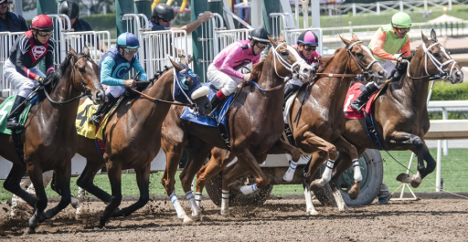 2020 Preakness Stake Horse Race: Which Thoroughbred Should You Bet? Sports Betting Stars